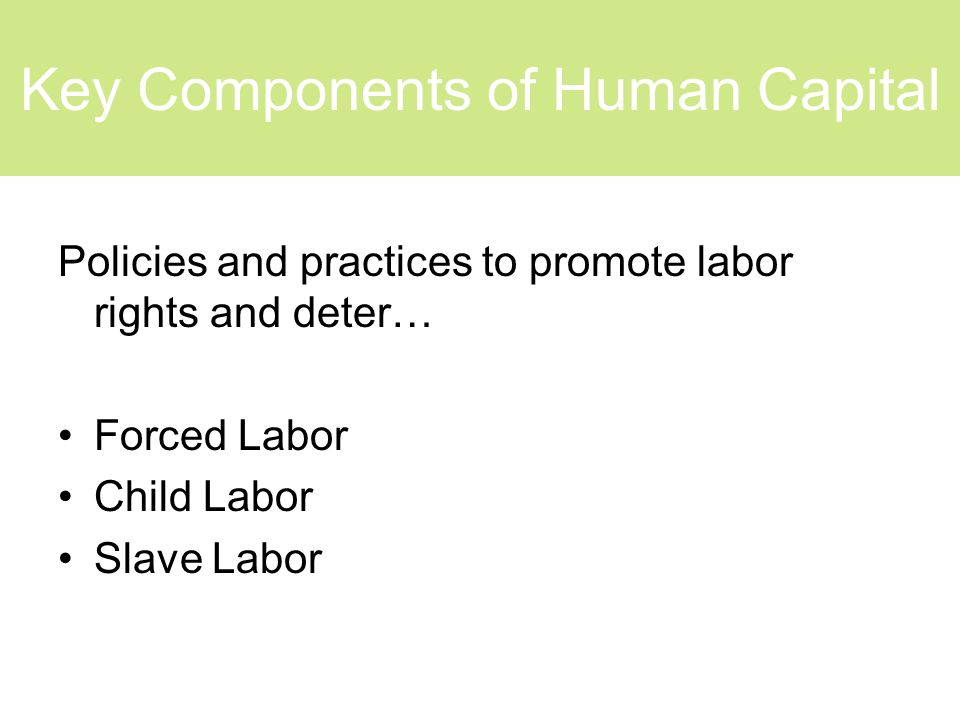 Key Components of Human Capital Policies and practices to promote labor rights and deter… Forced Labor Child Labor Slave Labor