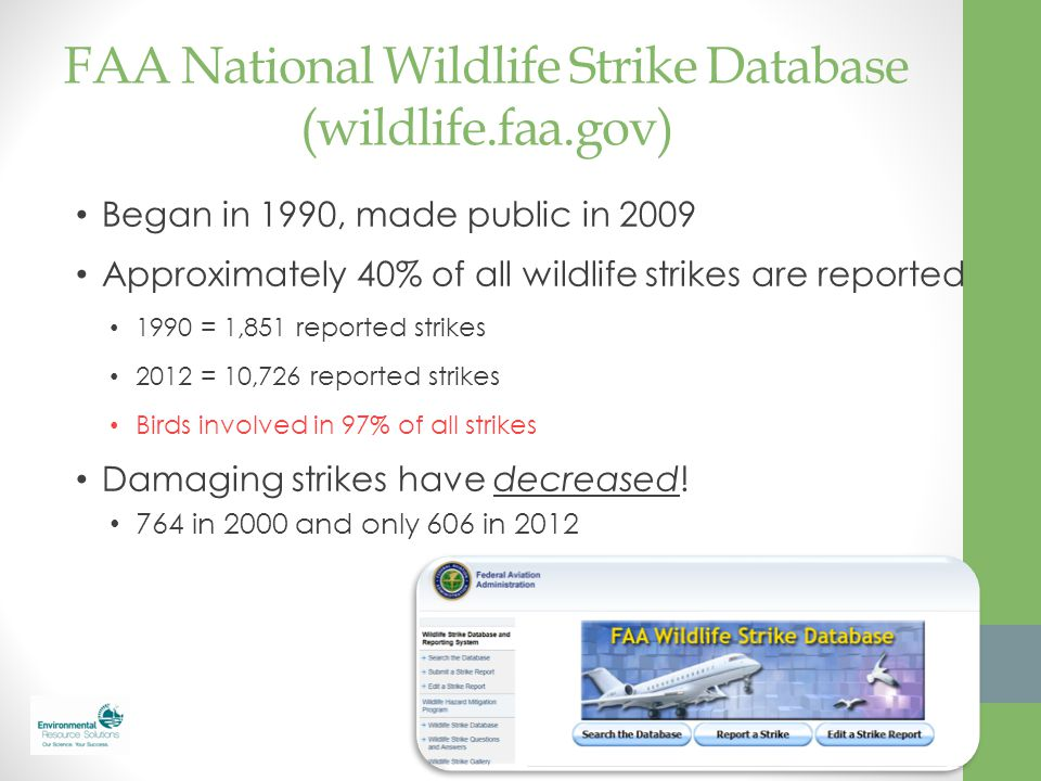 FAA National Wildlife Strike Database (wildlife.faa.gov) Began in 1990, made public in 2009 Approximately 40% of all wildlife strikes are reported 199