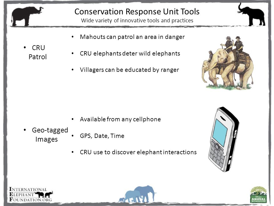 Mahouts can patrol an area in danger CRU elephants deter wild elephants Villagers can be educated by ranger Available from any cellphone GPS, Date, Time CRU use to discover elephant interactions CRU Patrol Geo-tagged Images Conservation Response Unit Tools Wide variety of innovative tools and practices