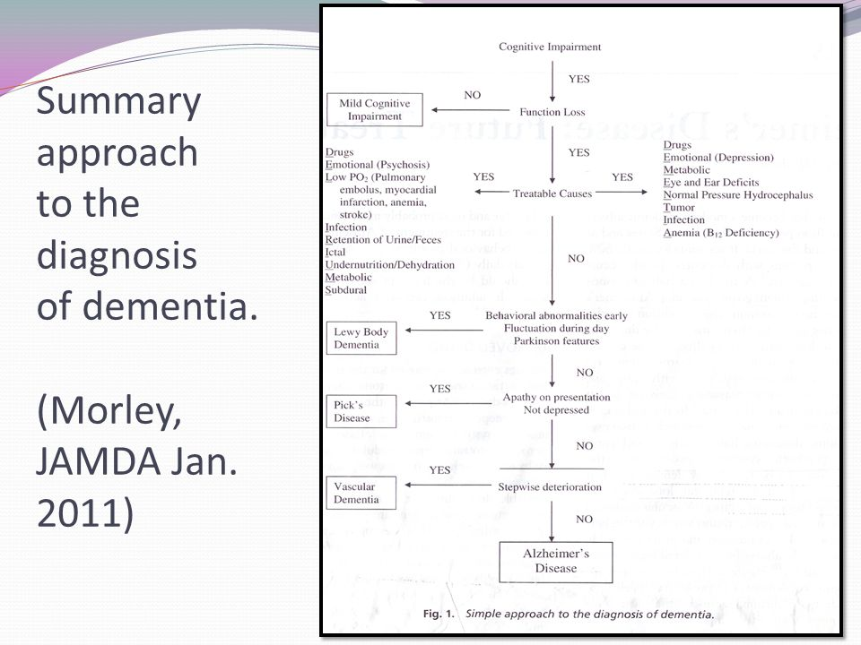 Summary approach to the diagnosis of dementia. (Morley, JAMDA Jan. 2011)