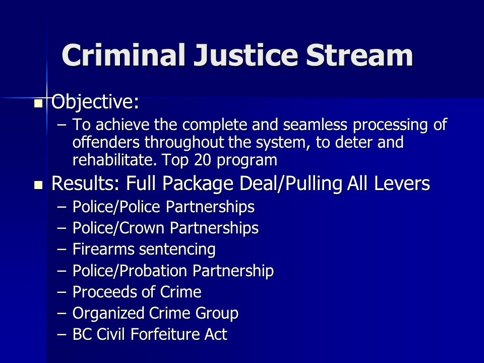 Criminal Justice Stream Objective: Objective: –To achieve the complete and seamless processing of offenders throughout the system, to deter and rehabilitate.