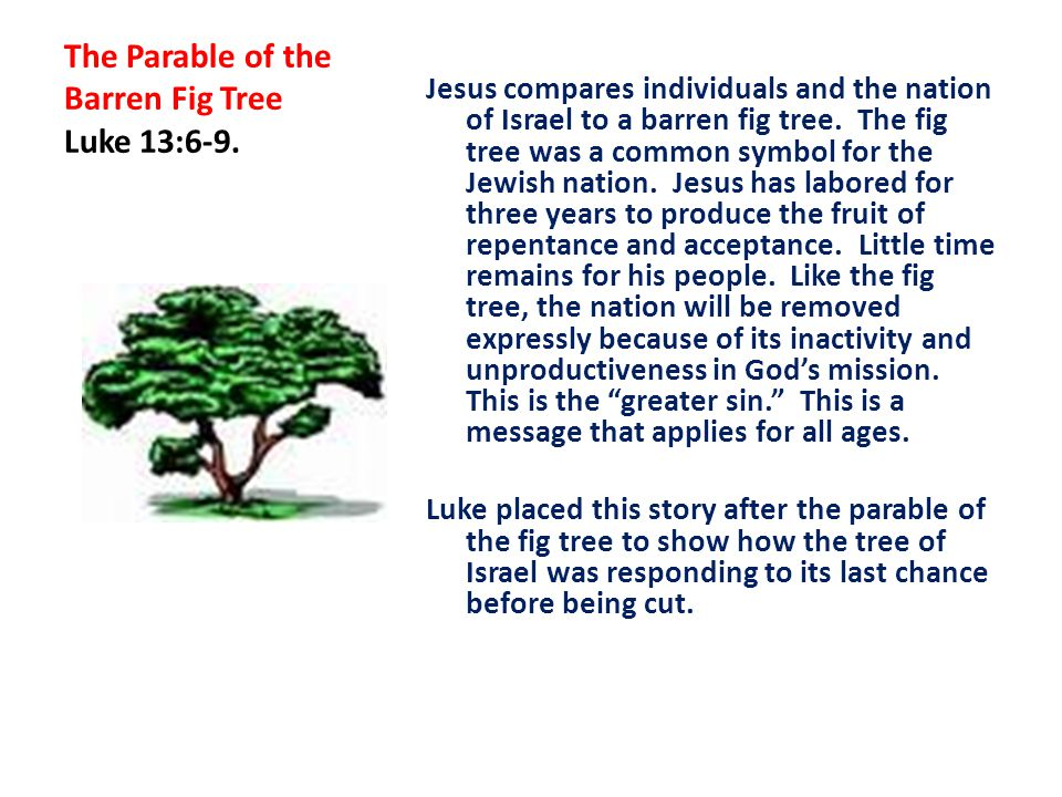 The Parable of the Barren Fig Tree Luke 13:6-9.