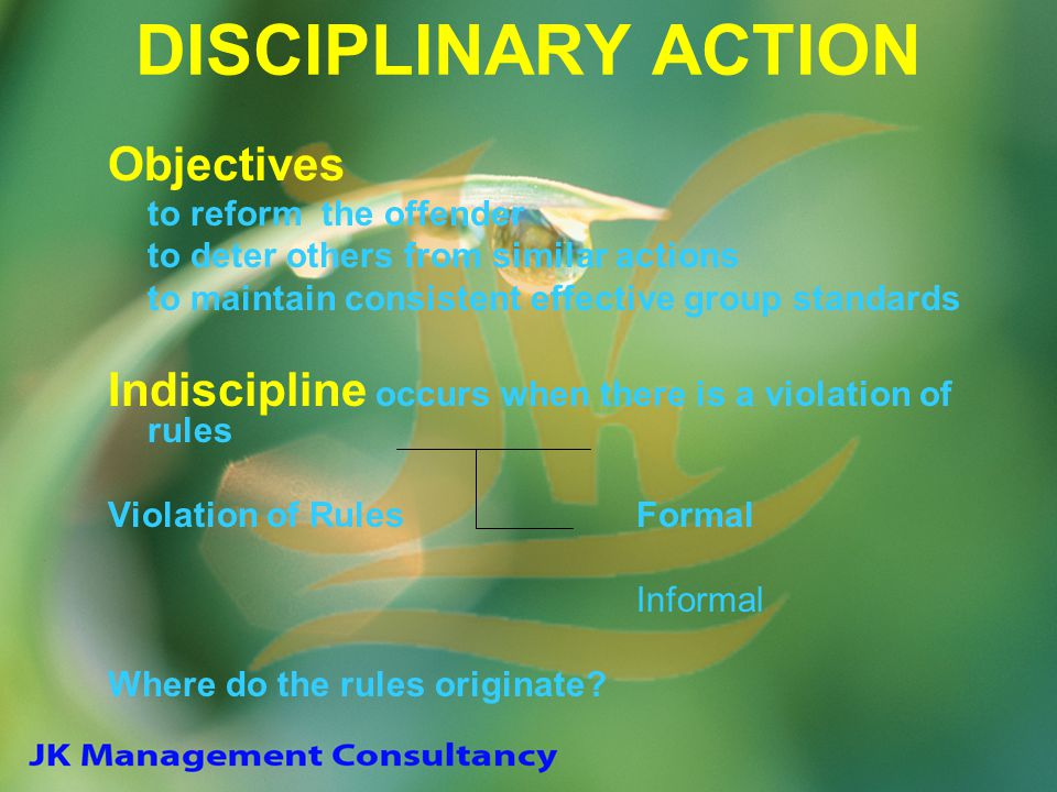 DISCIPLINARY ACTION Objectives to reform the offender to deter others from similar actions to maintain consistent effective group standards Indiscipli
