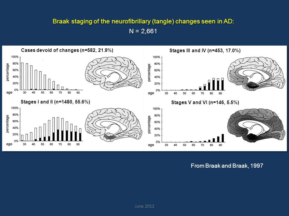 Cases devoid of amyloid (n=1513, 56.8%) Amyloid deposits of stage A (n=428, 16.1%) Amyloid deposits of stage B (n=428, 16.1%) Amyloid deposits of stage C (n=292, 11.0%) Braak staging of the amyloid changes seen in AD: N = 2,661 Braak staging of the amyloid changes seen in AD: N = 2,661 From Braak and Braak, 1997
