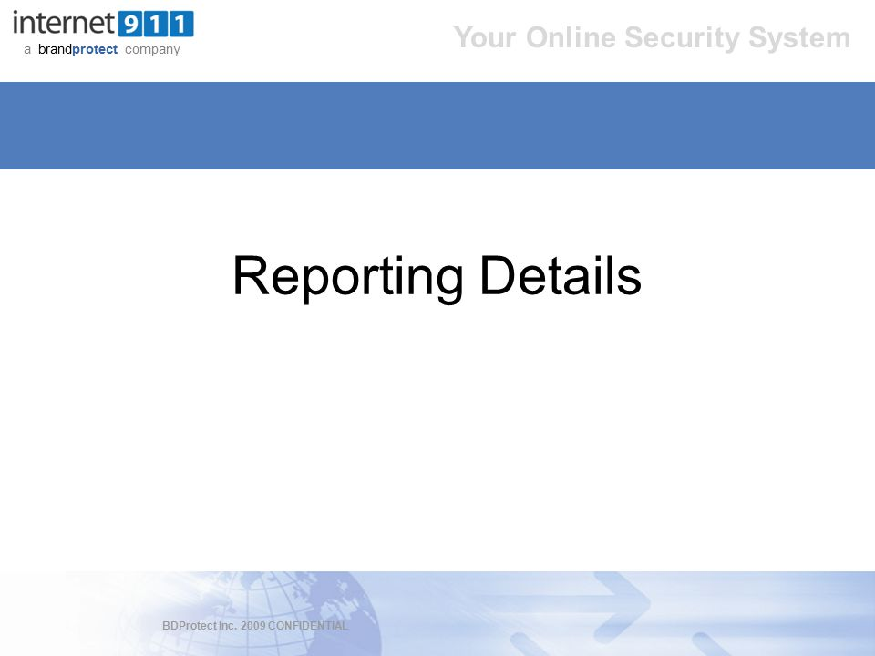 BDProtect Inc. 2009 CONFIDENTIAL a brandprotect company Your Online Security System Reporting Details