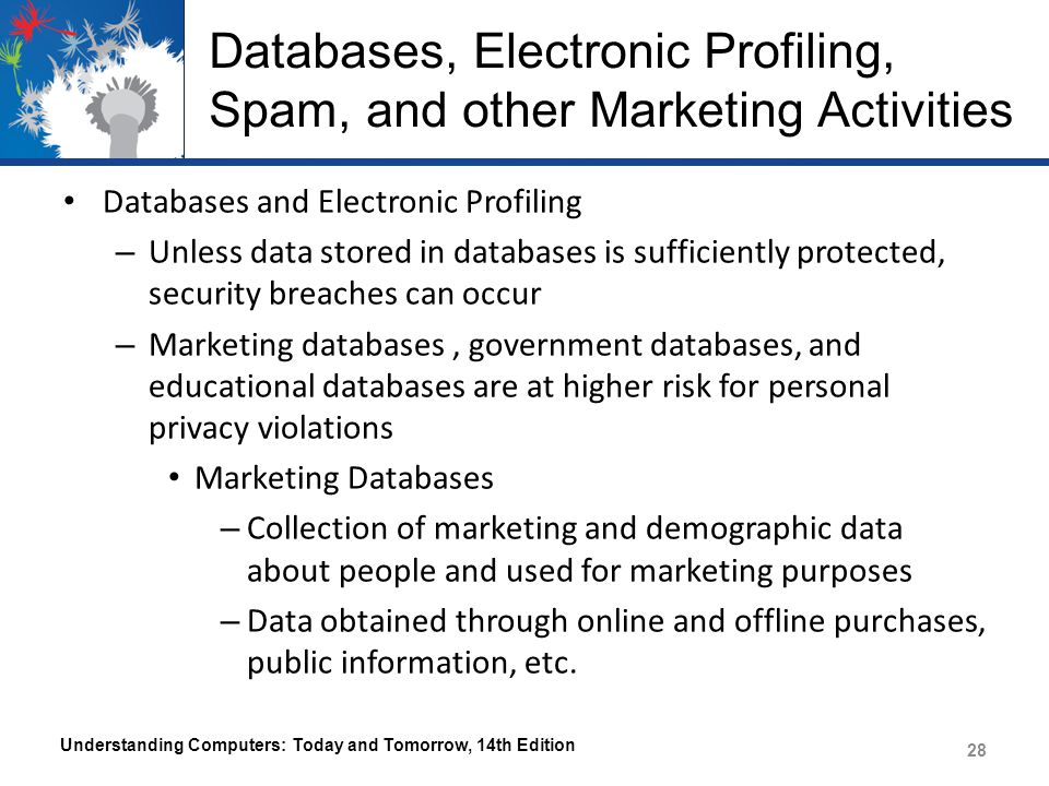 Databases, Electronic Profiling, Spam, and other Marketing Activities Databases and Electronic Profiling – Unless data stored in databases is sufficiently protected, security breaches can occur – Marketing databases, government databases, and educational databases are at higher risk for personal privacy violations Marketing Databases – Collection of marketing and demographic data about people and used for marketing purposes – Data obtained through online and offline purchases, public information, etc.