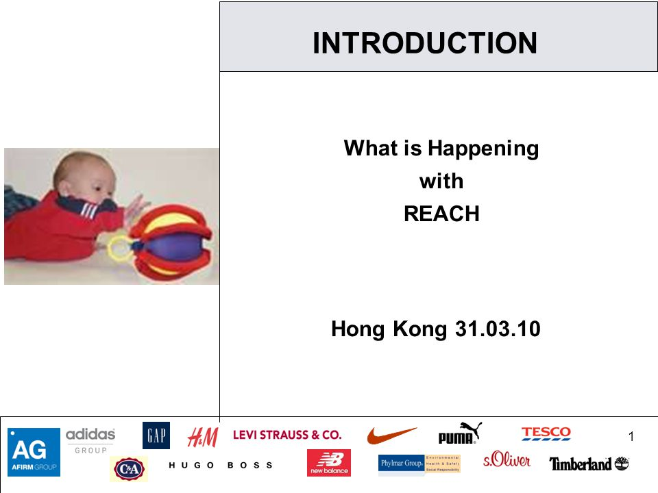 1 INTRODUCTION What is Happening with REACH Hong Kong 31.03.10