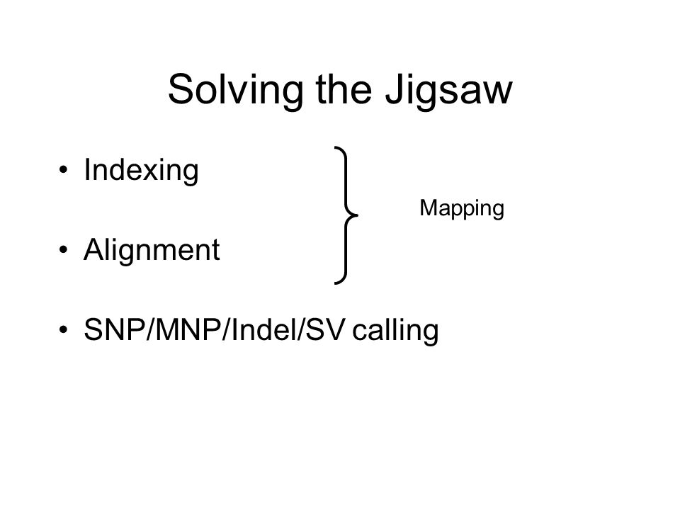 Solving the Jigsaw Indexing Alignment SNP/MNP/Indel/SV calling Mapping