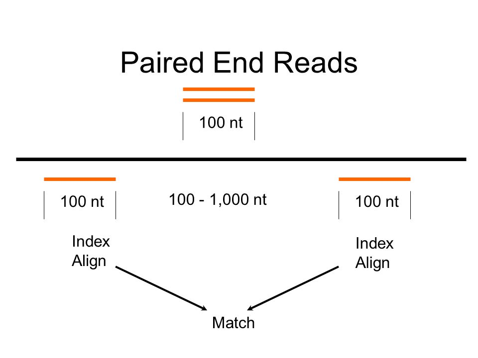 Paired End Reads 100 nt 100 - 1,000 nt Index Align Index Align Match 100 nt