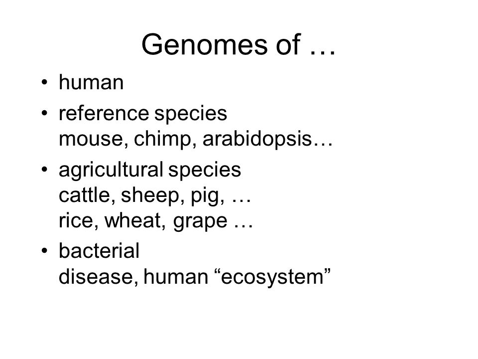 Genomes of … human reference species mouse, chimp, arabidopsis… agricultural species cattle, sheep, pig, … rice, wheat, grape … bacterial disease, human ecosystem