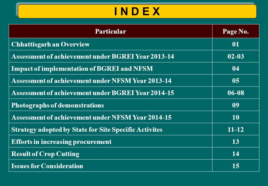 I N D E X ParticularPage No. Chhattisgarh an Overview01 Assessment of achievement under BGREI Year 2013-1402-03 Impact of implementation of BGREI and