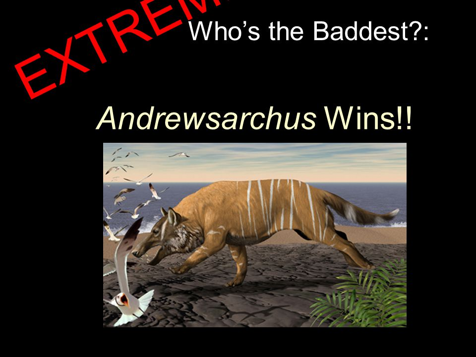 Who's the Baddest?: Andrewsarchus Wins!! EXTREME!!!