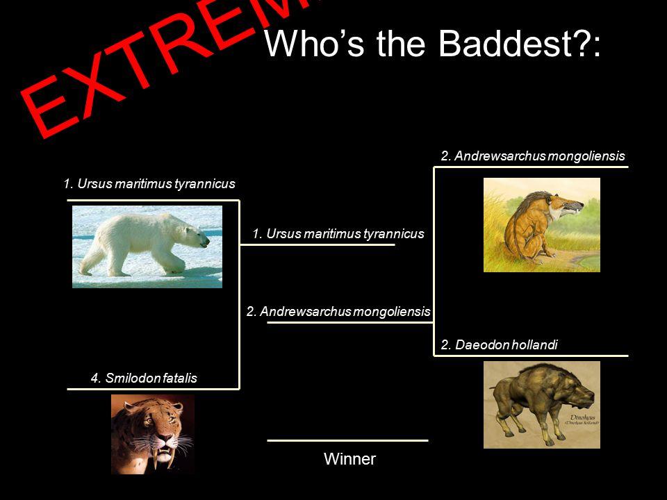 Who's the Baddest : Winner 1. Ursus maritimus tyrannicus 4.