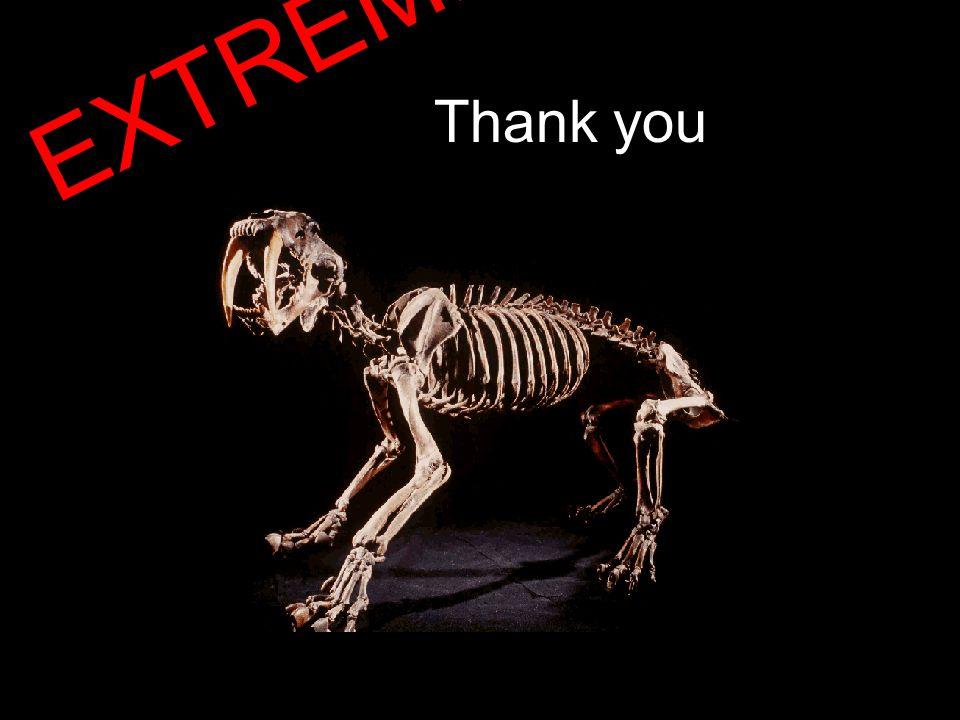 Thank you EXTREME!!!