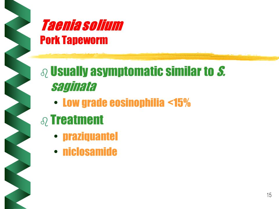 15 Taenia solium Pork Tapeworm b Usually asymptomatic similar to S. saginata Low grade eosinophilia <15% b Treatment praziquantel niclosamide