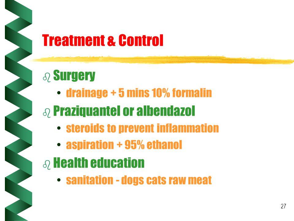 27 Treatment & Control b Surgery drainage + 5 mins 10% formalin b Praziquantel or albendazol steroids to prevent inflammation aspiration + 95% ethanol