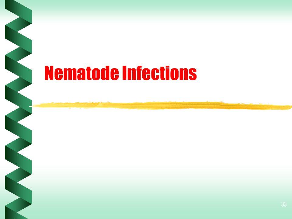 33 Nematode Infections