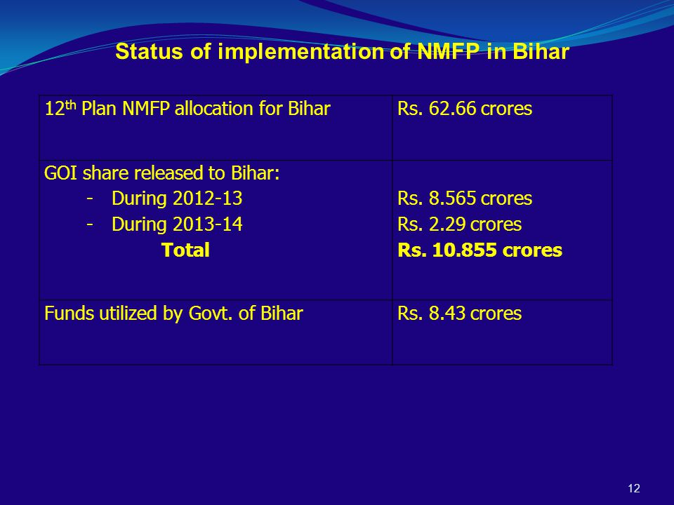 12 Status of implementation of NMFP in Bihar 12 th Plan NMFP allocation for BiharRs.