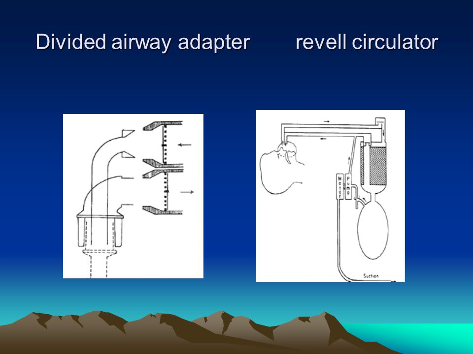 Divided airway adapter revell circulator
