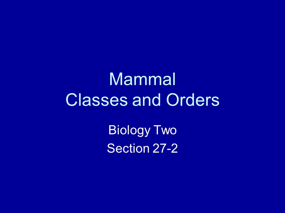 Mammal Classes and Orders Biology Two Section 27-2