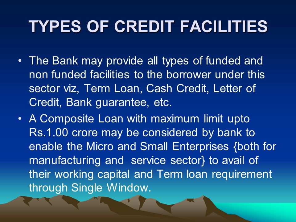 TYPES OF CREDIT FACILITIES The Bank may provide all types of funded and non funded facilities to the borrower under this sector viz, Term Loan, Cash Credit, Letter of Credit, Bank guarantee, etc.