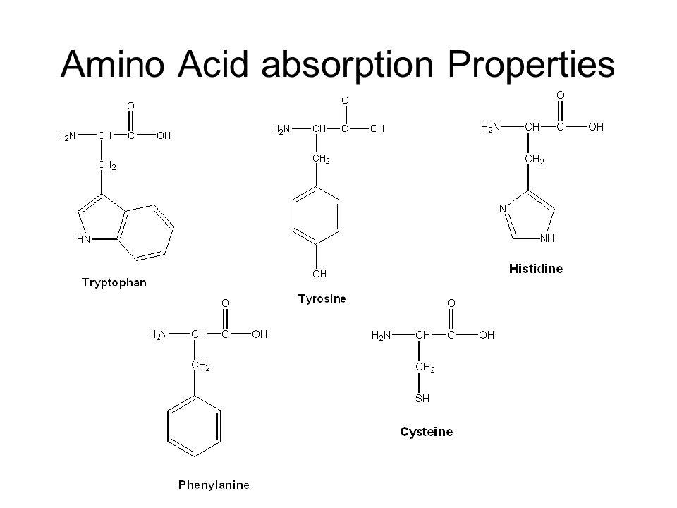 Amino Acid absorption Properties
