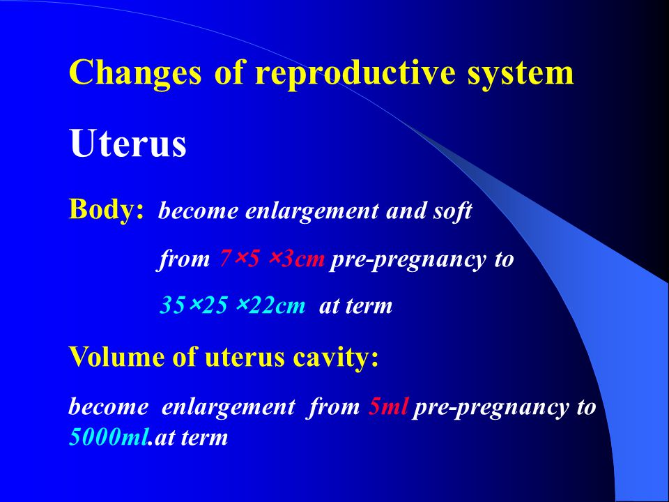 Changes of reproductive system Uterus Body: become enlargement and soft from 7×5 ×3cm pre-pregnancy to 35×25 ×22cm at term Volume of uterus cavity: become enlargement from 5ml pre-pregnancy to 5000ml.at term