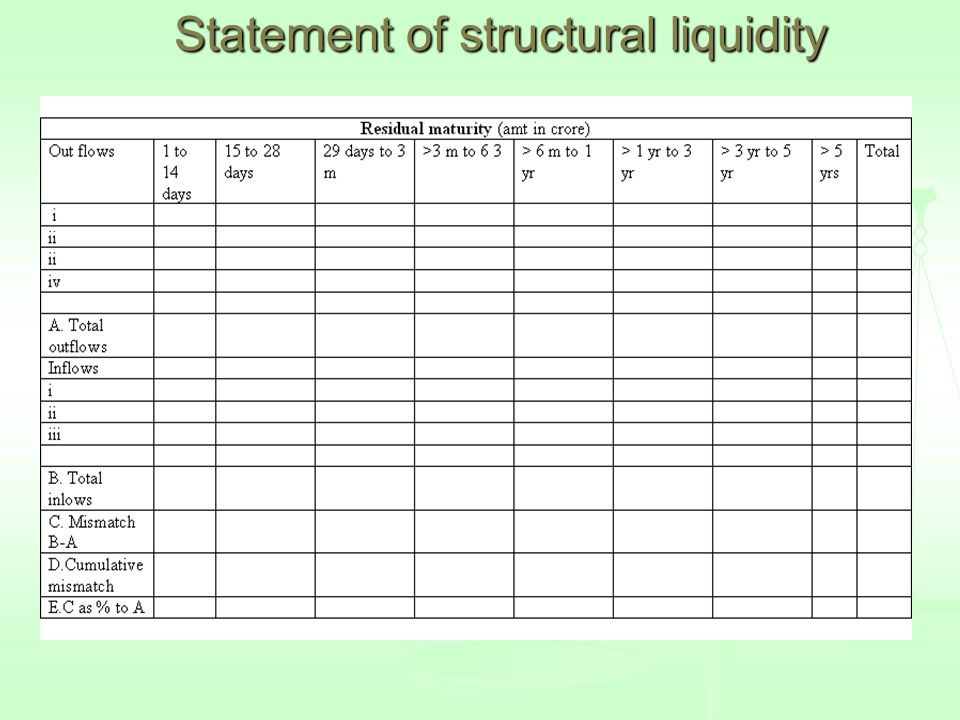 Statement of structural liquidity