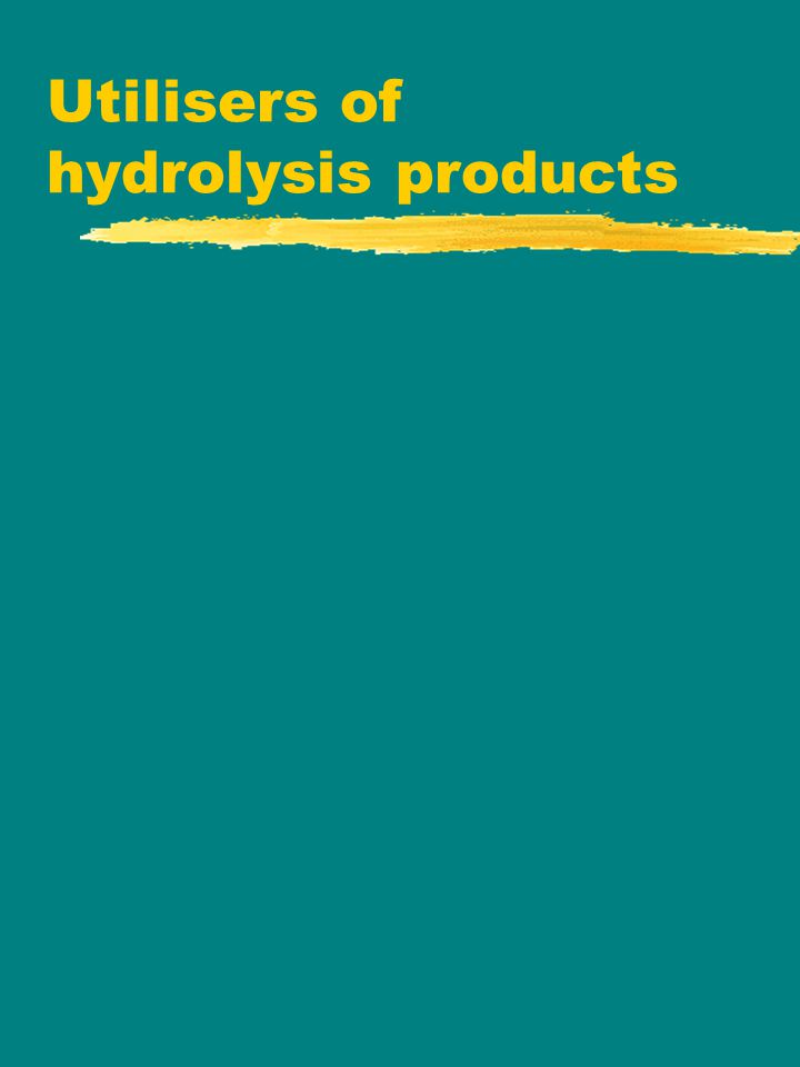 Utilisers of hydrolysis products