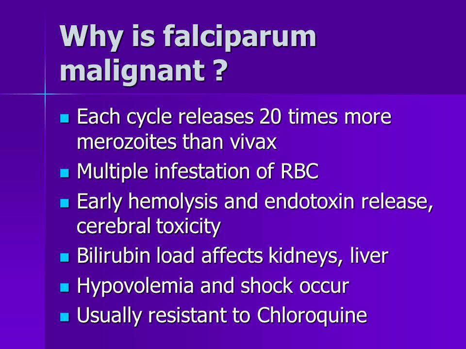 Differentiation of falciparum P.falciparum trophoziteP.vivax trophozite