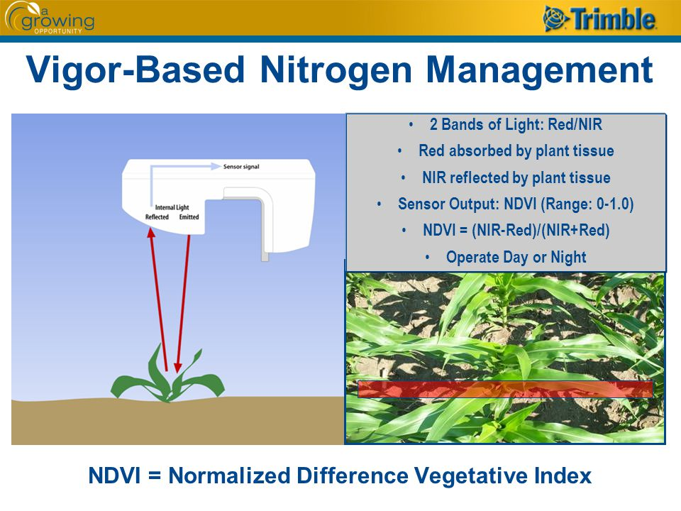 Vigor-Based Nitrogen Management NDVI = Normalized Difference Vegetative Index 2 Bands of Light: Red/NIR Red absorbed by plant tissue NIR reflected by plant tissue Sensor Output: NDVI (Range: 0-1.0) NDVI = (NIR-Red)/(NIR+Red) Operate Day or Night