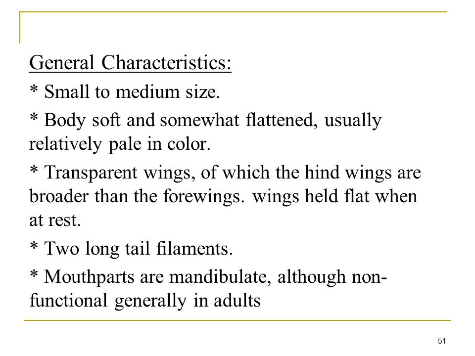 51 General Characteristics: * Small to medium size.