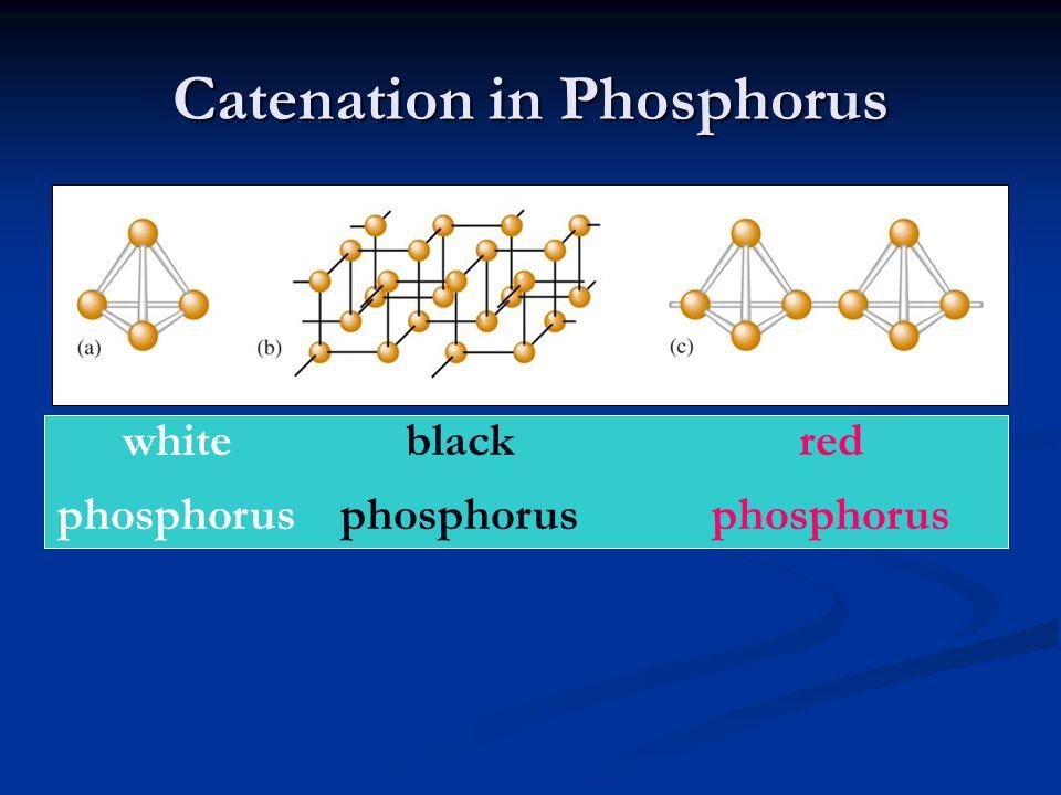 Catenation in Phosphorus white phosphorus black phosphorus red phosphorus