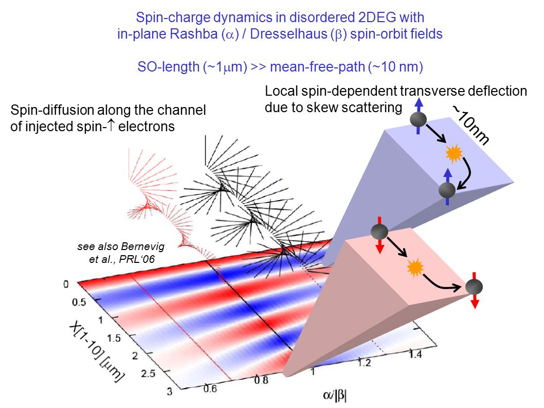 see also Bernevig et al., PRL'06 Spin-diffusion along the channel of injected spin-  electrons Local spin-dependent transverse deflection due to skew scattering ~10nm Spin-charge dynamics in disordered 2DEG with in-plane Rashba (  ) / Dresselhaus (  ) spin-orbit fields SO-length (~1  m) >> mean-free-path (~10 nm)