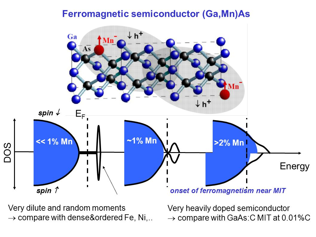 Ferromagnetic semiconductor (Ga,Mn)As EFEF DOS Energy spin  spin  << 1% Mn ~1% Mn >2% Mn onset of ferromagnetism near MIT Very dilute and random moments  compare with dense&ordered Fe, Ni,..