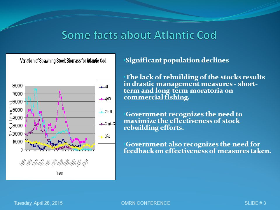 Significant population declines The lack of rebuilding of the stocks results in drastic management measures - short- term and long-term moratoria on commercial fishing.