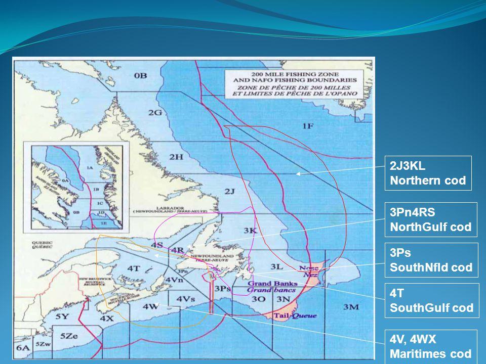 2J3KL Northern cod 3Ps SouthNfld cod 4V, 4WX Maritimes cod 3Pn4RS NorthGulf cod 4T SouthGulf cod