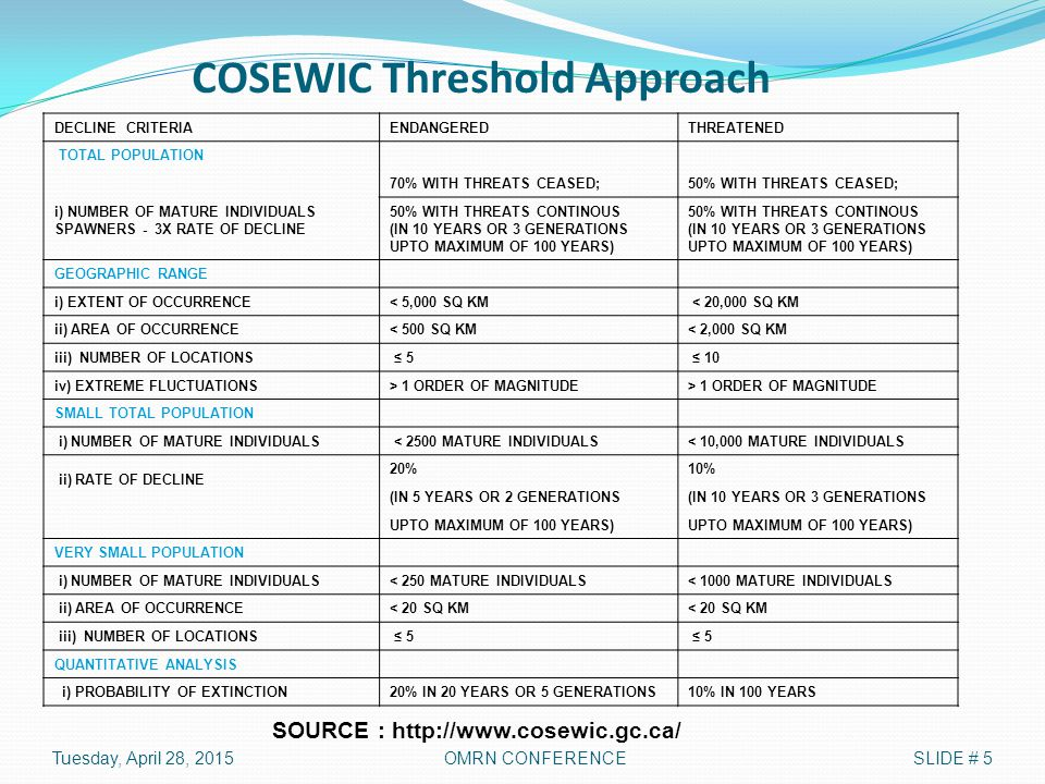 COSEWIC Threshold Approach DECLINE CRITERIAENDANGEREDTHREATENED TOTAL POPULATION 70% WITH THREATS CEASED; i) NUMBER OF MATURE INDIVIDUALS SPAWNERS - 3X RATE OF DECLINE 50% WITH THREATS CEASED; 50% WITH THREATS CONTINOUS (IN 10 YEARS OR 3 GENERATIONS UPTO MAXIMUM OF 100 YEARS) 50% WITH THREATS CONTINOUS (IN 10 YEARS OR 3 GENERATIONS UPTO MAXIMUM OF 100 YEARS) GEOGRAPHIC RANGE i) EXTENT OF OCCURRENCE< 5,000 SQ KM < 20,000 SQ KM ii) AREA OF OCCURRENCE< 500 SQ KM< 2,000 SQ KM iii) NUMBER OF LOCATIONS ≤ 5 ≤ 10 iv) EXTREME FLUCTUATIONS> 1 ORDER OF MAGNITUDE SMALL TOTAL POPULATION i) NUMBER OF MATURE INDIVIDUALS < 2500 MATURE INDIVIDUALS< 10,000 MATURE INDIVIDUALS ii) RATE OF DECLINE 20%10% (IN 5 YEARS OR 2 GENERATIONS(IN 10 YEARS OR 3 GENERATIONS UPTO MAXIMUM OF 100 YEARS) VERY SMALL POPULATION i) NUMBER OF MATURE INDIVIDUALS< 250 MATURE INDIVIDUALS< 1000 MATURE INDIVIDUALS ii) AREA OF OCCURRENCE< 20 SQ KM iii) NUMBER OF LOCATIONS ≤ 5 QUANTITATIVE ANALYSIS i) PROBABILITY OF EXTINCTION20% IN 20 YEARS OR 5 GENERATIONS10% IN 100 YEARS SOURCE : http://www.cosewic.gc.ca/ Tuesday, April 28, 2015SLIDE # 5OMRN CONFERENCE