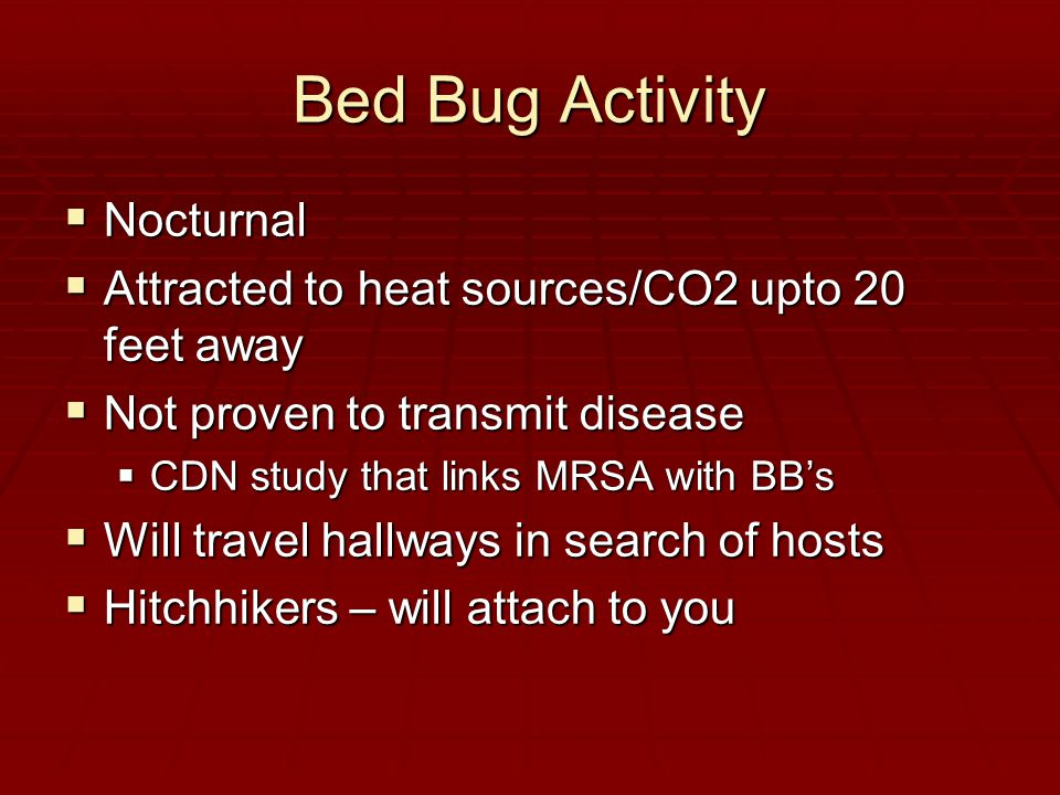 Bed Bug Activity  Nocturnal  Attracted to heat sources/CO2 upto 20 feet away  Not proven to transmit disease  CDN study that links MRSA with BB's  Will travel hallways in search of hosts  Hitchhikers – will attach to you