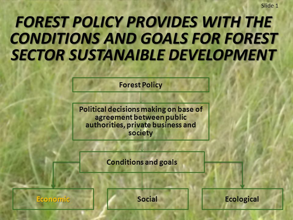 FOREST POLICY PROVIDES WITH THE CONDITIONS AND GOALS FOR FOREST SECTOR SUSTANAIBLE DEVELOPMENT Slide 1 Forest Policy Political decisions making on base of agreement between public authorities, private business and society Conditions and goals EconomicSocialEcological