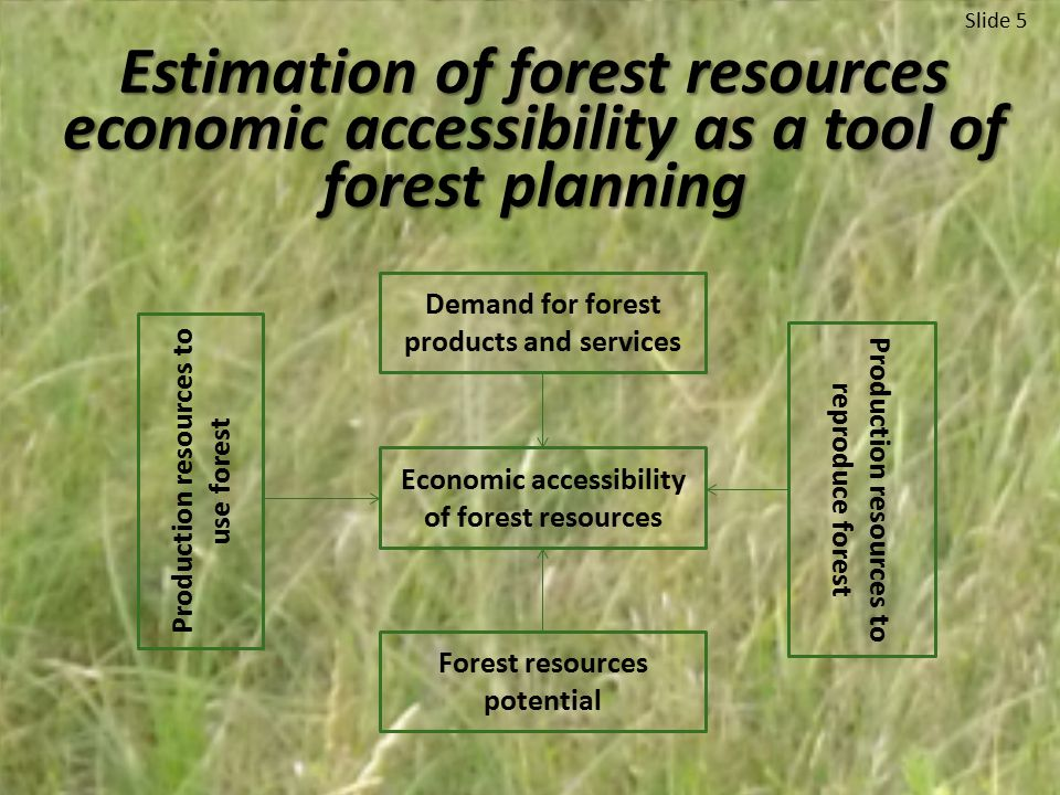 Estimation of forest resources economic accessibility as a tool of forest planning Slide 5 Demand for forest products and services Economic accessibility of forest resources Forest resources potential Production resources to use forest Production resources to reproduce forest