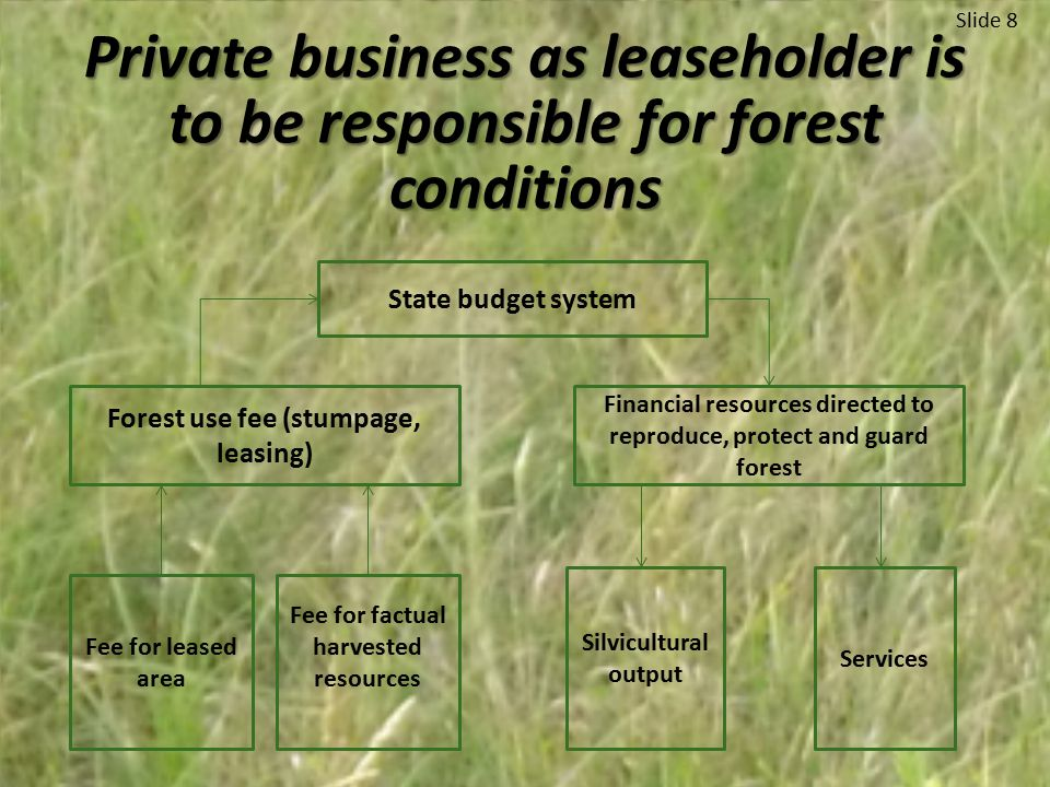 Slide 8 Private business as leaseholder is to be responsible for forest conditions State budget system Forest use fee (stumpage, leasing) Financial resources directed to reproduce, protect and guard forest Fee for leased area Fee for factual harvested resources Silvicultural output Services