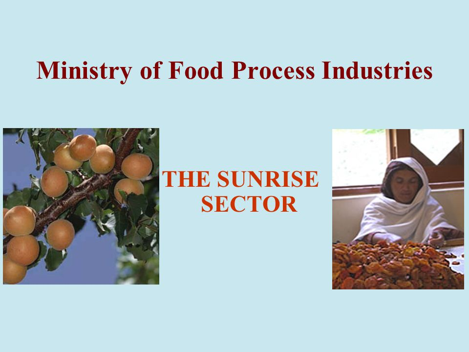 Ministry of Food Process Industries THE SUNRISE SECTOR