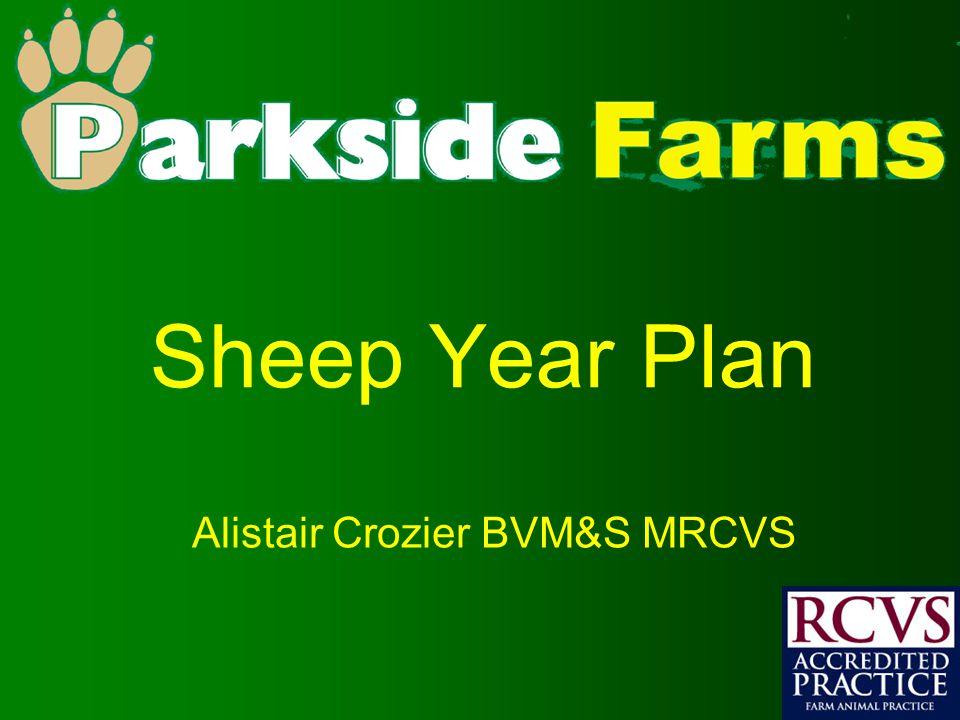 Sheep Year Plan Alistair Crozier BVM&S MRCVS