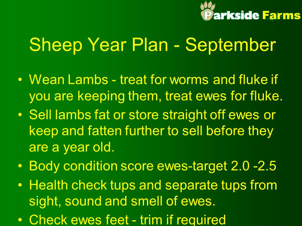 Sheep Year Plan - September Wean Lambs - treat for worms and fluke if you are keeping them, treat ewes for fluke. Sell lambs fat or store straight off