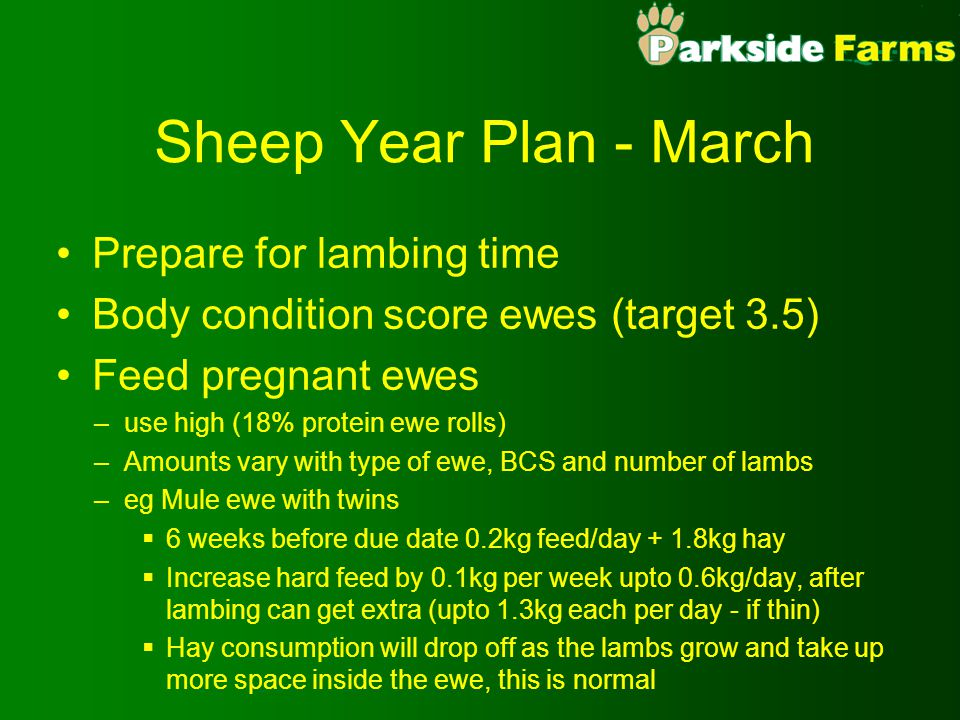 Sheep Year Plan - March Prepare for lambing time Body condition score ewes (target 3.5) Feed pregnant ewes –use high (18% protein ewe rolls) –Amounts