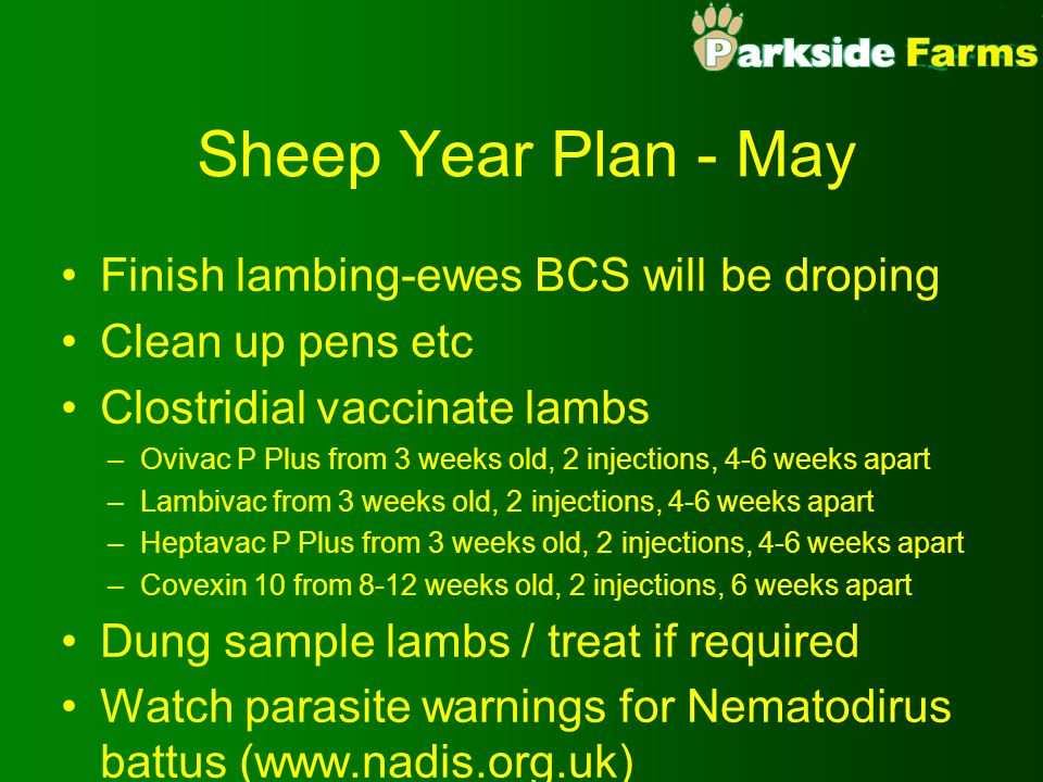 Sheep Year Plan - May Finish lambing-ewes BCS will be droping Clean up pens etc Clostridial vaccinate lambs –Ovivac P Plus from 3 weeks old, 2 injections, 4-6 weeks apart –Lambivac from 3 weeks old, 2 injections, 4-6 weeks apart –Heptavac P Plus from 3 weeks old, 2 injections, 4-6 weeks apart –Covexin 10 from 8-12 weeks old, 2 injections, 6 weeks apart Dung sample lambs / treat if required Watch parasite warnings for Nematodirus battus (www.nadis.org.uk)