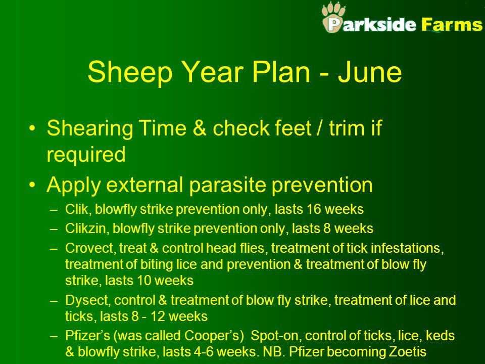 Sheep Year Plan - June Shearing Time & check feet / trim if required Apply external parasite prevention –Clik, blowfly strike prevention only, lasts 1