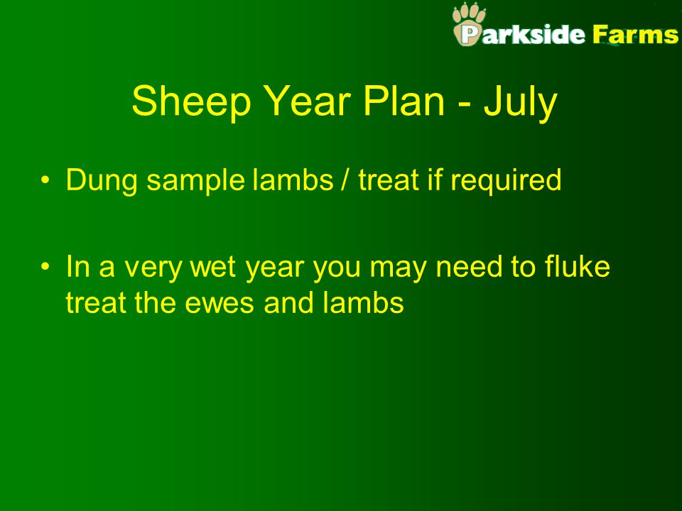 Sheep Year Plan - August Repeat fly strike prevention treatment - depends on the drug you have used Select any older fat lambs for sale (this is very early but if you have a low stocking density it is possible) Expect ewes BCS leveling off (2.5 - 2.75)