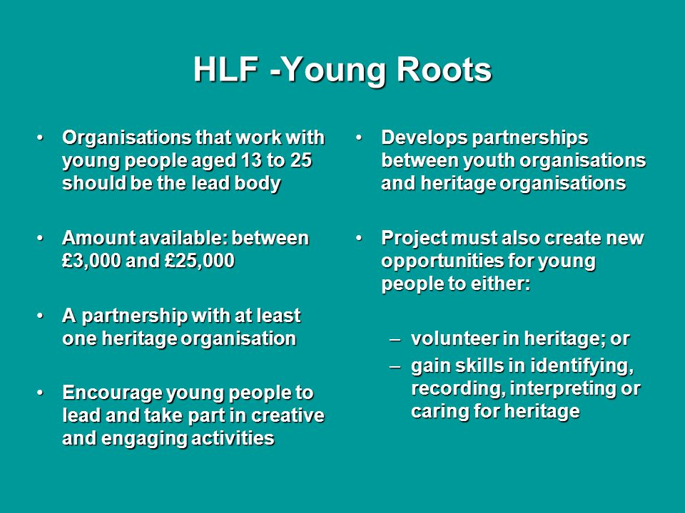 HLF -Young Roots Organisations that work with young people aged 13 to 25 should be the lead bodyOrganisations that work with young people aged 13 to 25 should be the lead body Amount available: between £3,000 and £25,000Amount available: between £3,000 and £25,000 A partnership with at least one heritage organisationA partnership with at least one heritage organisation Encourage young people to lead and take part in creative and engaging activitiesEncourage young people to lead and take part in creative and engaging activities Develops partnerships between youth organisations and heritage organisations Project must also create new opportunities for young people to either: –volunteer in heritage; or –gain skills in identifying, recording, interpreting or caring for heritage